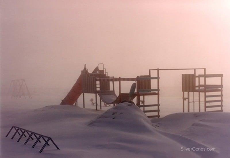 Composition Basics - Ice Fog in a Playground Cardinal ON