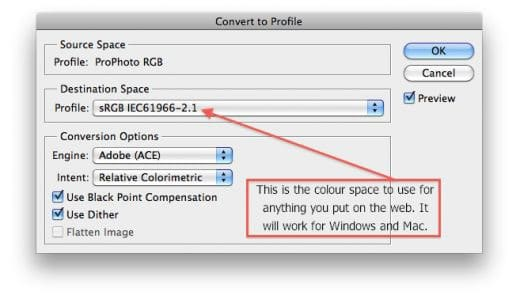 Photoshop Trick to Resize Photos for Web - Fig. 3